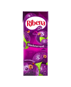 Ribena Carton 250ml RTD Ready to drink